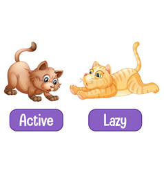 Opposite words with active and lazy vector