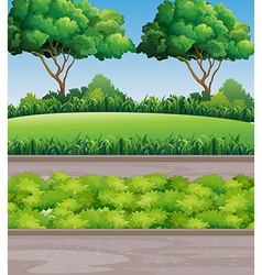 Scene at park with lawn and trees vector image