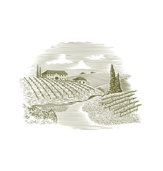 Woodcut vineyard and stream vector