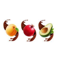 fruit in chocolate splash realistic vector image