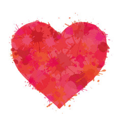 heart watercolor paint splatter vector image