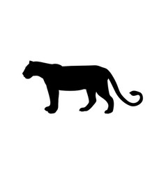 Lioness predator black silhouette animal vector