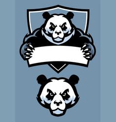 Panda in sport mascot vector