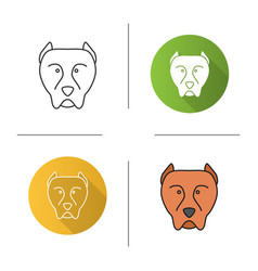 Pit bull icon vector