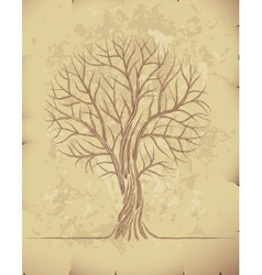 Tree on old paper vector