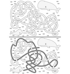 whale maze vector image