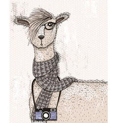 Cute hipster lama with photo camera glasses vector image vector image