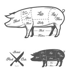British UK cuts of pork vector image vector image