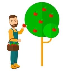 Farmer collecting apples vector