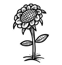 cartoon image of flower icon spring symbol vector image
