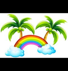 A rainbow and the coconut trees vector