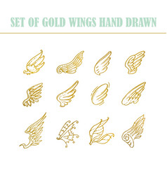 hand drawn wings set design elements vector image