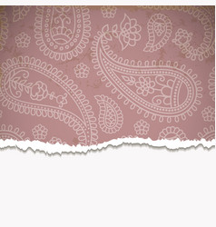 Pink paisley frame vector