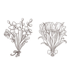 Set hand drawn spring bouquets vector