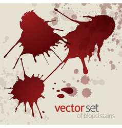 Splattered blood stains set 1 vector image