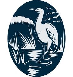 Heron wading in the marsh or swamp vector