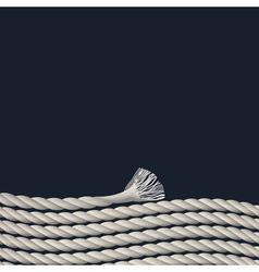 Stylish background with marine rope vector image