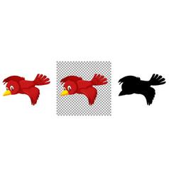 Cute red bird cartoon character vector