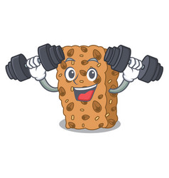 Fitness granola bar character cartoon vector