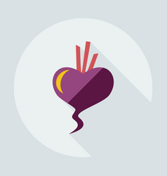 Flat modern design with shadow icons beet vector