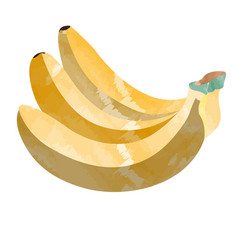 isolated group of bananas vector image