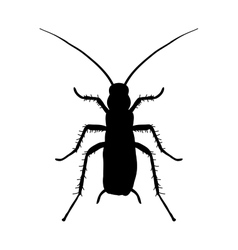 Silhouette of cockroach blattella germanica vector