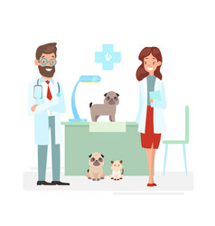 veterinarians staff vector image