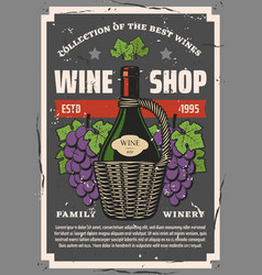 winery and wine shop bottle and grape bunches vector image
