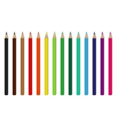 colored wooden pencils vector image