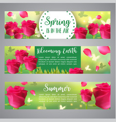 floral banners greeting invitation with roses vector image