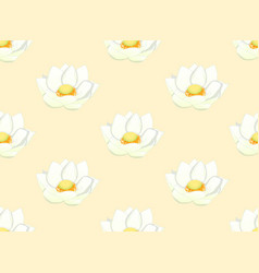 white indian lotus on ivory beige background vector image