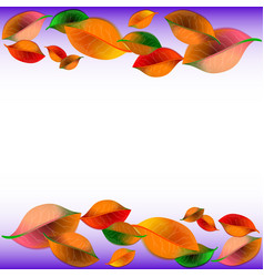 abstract background with colorful autumn leaves vector image
