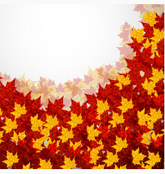 autumn background maple leaves colofrul image vector image