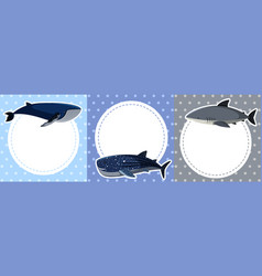 Background design with whales and shark vector