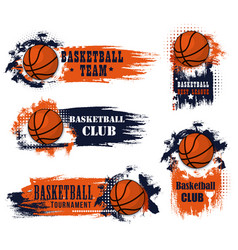 basketball team club ball icons vector image
