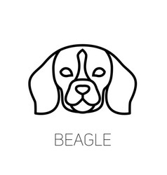 Beagle linear face icon isolated outline dog head vector