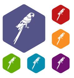 Brazilian parrot icons set hexagon vector