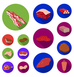 Different meat flat icons in set collection for vector
