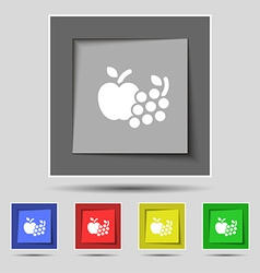Fruits web icons sign on original five colored vector