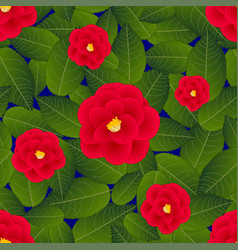 red camellia flower on blue background vector image