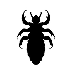 Silhouette of head human louse Pediculus humanus vector