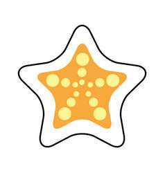 starfish tropical summer icon vector image