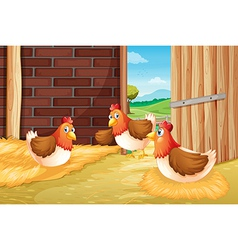 Three chickens nesting vector