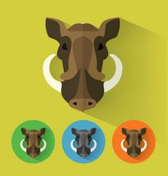boar portrait with flat design vector image vector image
