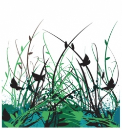 floral vine garden vector image