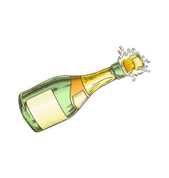 champagne blank label bottle explosion color vector image