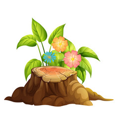 Colorful flowers and stump wood on white vector