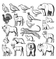 hunting monochrome animals and birds vector image