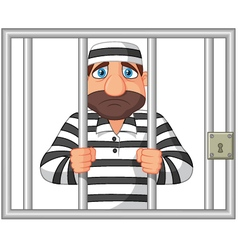 Prisoner behind bar vector