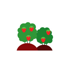 ripe red strawberries on green bushes isolated on vector image